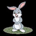 La apuesta del conejo