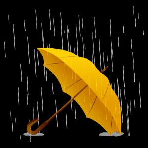 El vendedor de lluvias