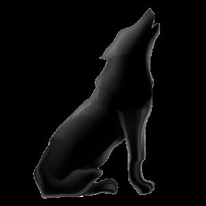 El can de media noche